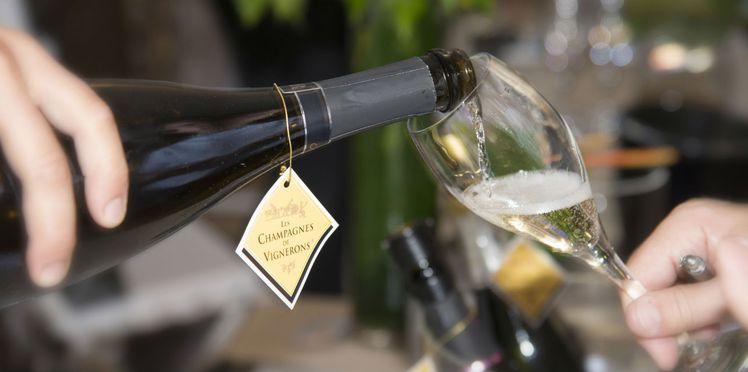 vendange 2017 en champagne